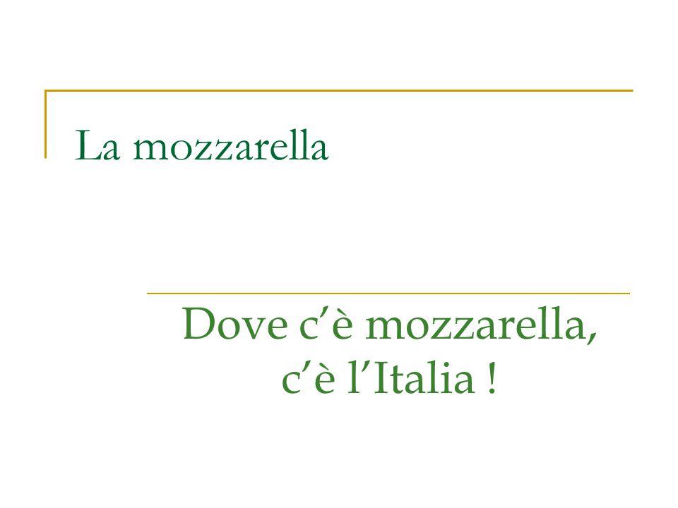 Dove c'è mozzarella, c'è l'Italia !