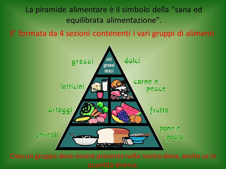 E formata da 4 sezioni contenenti i vari gruppi di alimenti