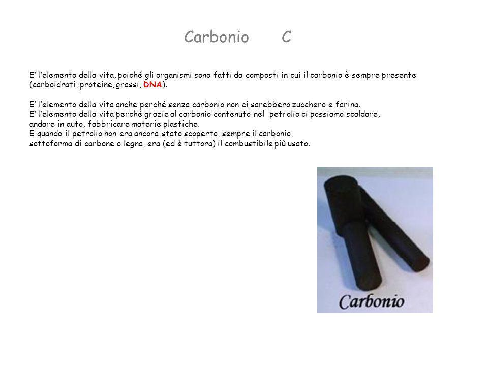 Carbonio C. E' l'elemento della vita, poiché gli organismi sono fatti da composti in cui il carbonio è sempre presente.