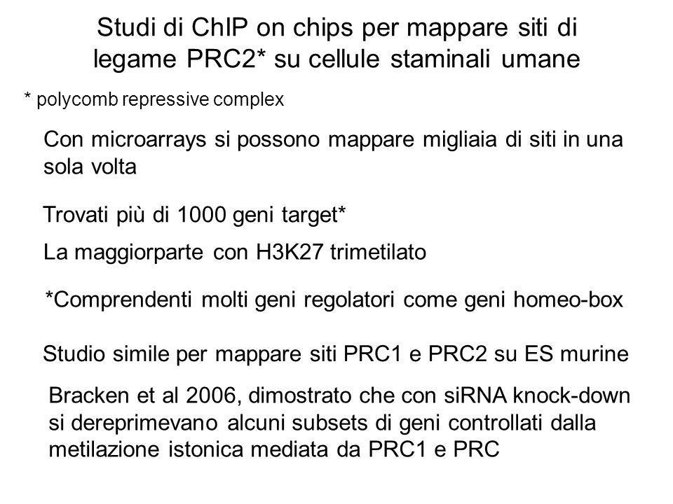Studi di ChIP on chips per mappare siti di legame PRC2