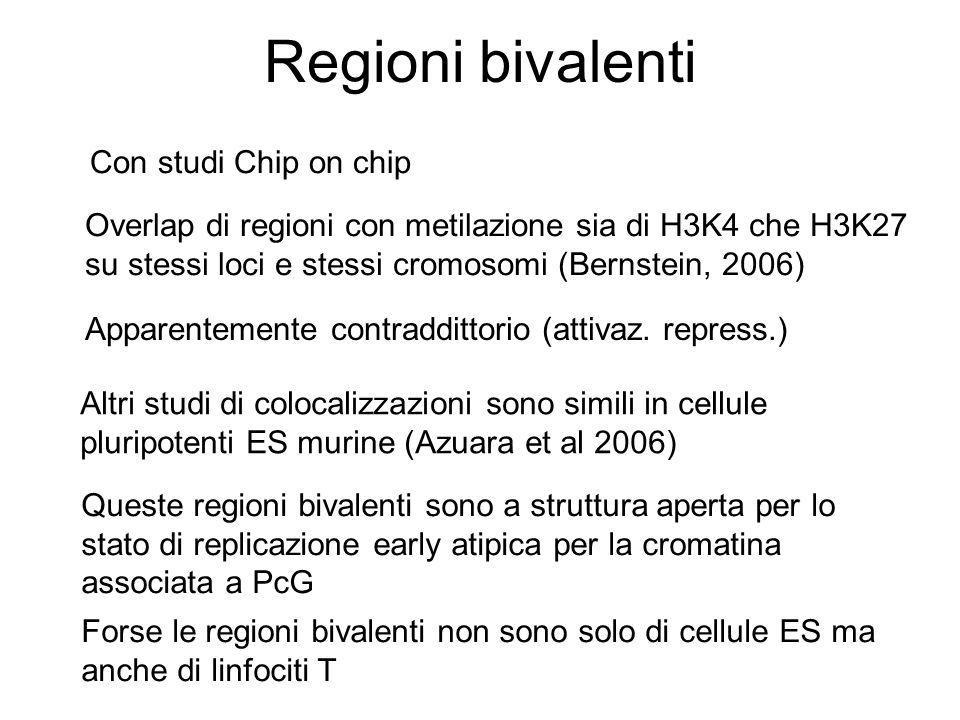 Regioni bivalenti Con studi Chip on chip