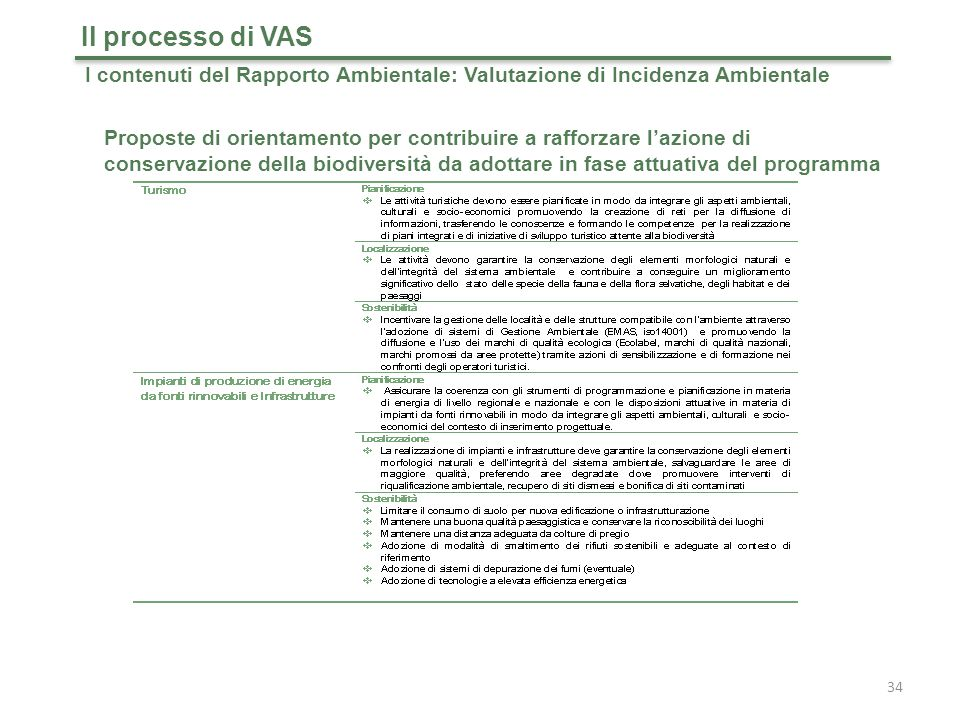 Il processo di VAS I contenuti del Rapporto Ambientale: Valutazione di Incidenza Ambientale.