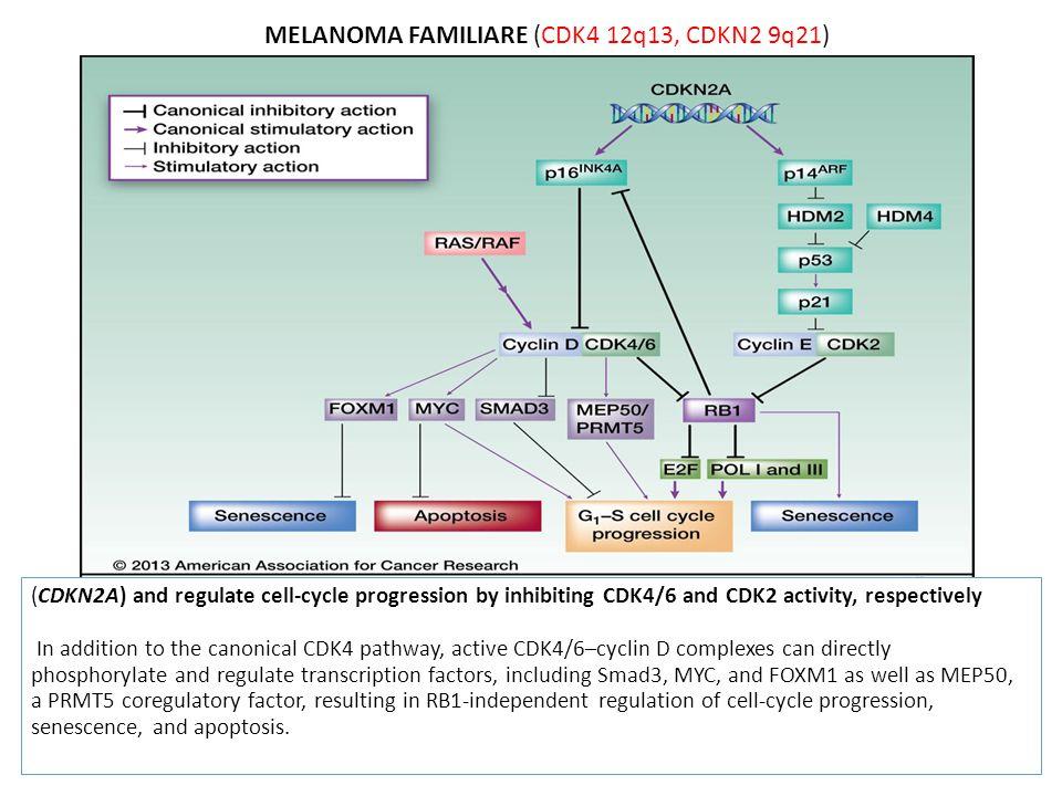 MELANOMA FAMILIARE (CDK4 12q13, CDKN2 9q21)