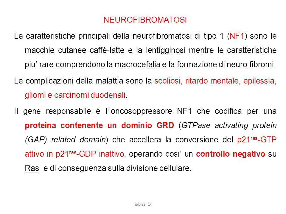 NEUROFIBROMATOSI Le caratteristiche principali della neurofibromatosi di tipo 1 (NF1) sono le macchie cutanee caffè-latte e la lentigginosi mentre le caratteristiche piu' rare comprendono la macrocefalia e la formazione di neuro fibromi. Le complicazioni della malattia sono la scoliosi, ritardo mentale, epilessia, gliomi e carcinomi duodenali. Il gene responsabile è l'oncosoppressore NF1 che codifica per una proteina contenente un dominio GRD (GTPase activating protein (GAP) related domain) che accellera la conversione del p21ras-GTP attivo in p21ras-GDP inattivo, operando cosi' un controllo negativo su Ras e di conseguenza sulla divisione cellulare.