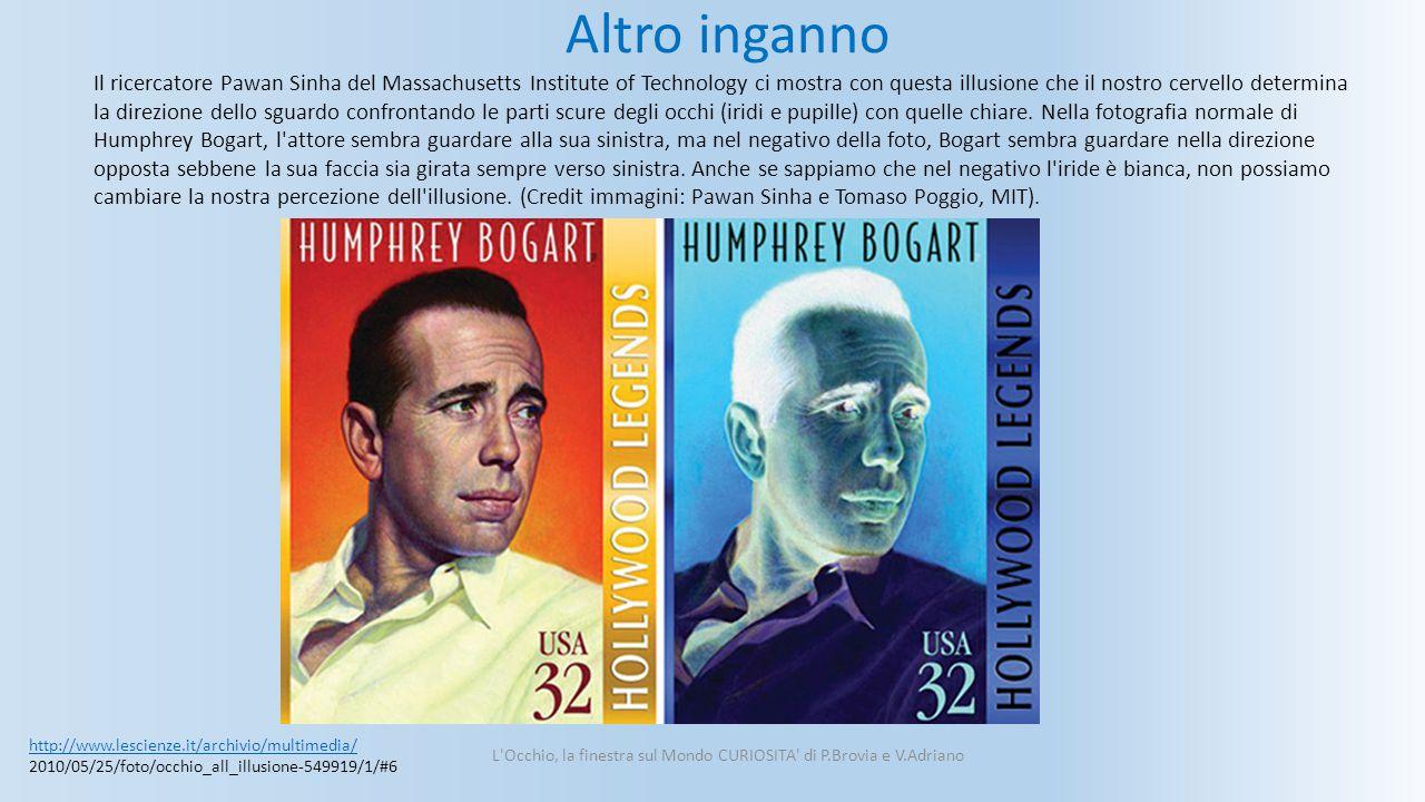 L Occhio, la finestra sul Mondo CURIOSITA di P.Brovia e V.Adriano