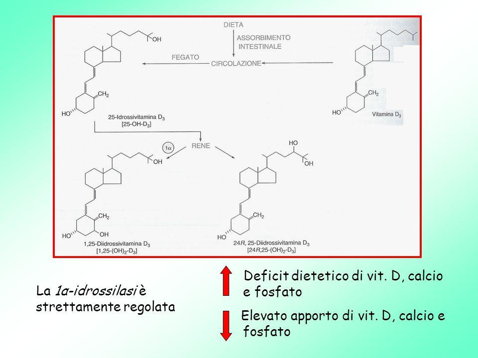 Deficit dietetico di vit. D, calcio e fosfato