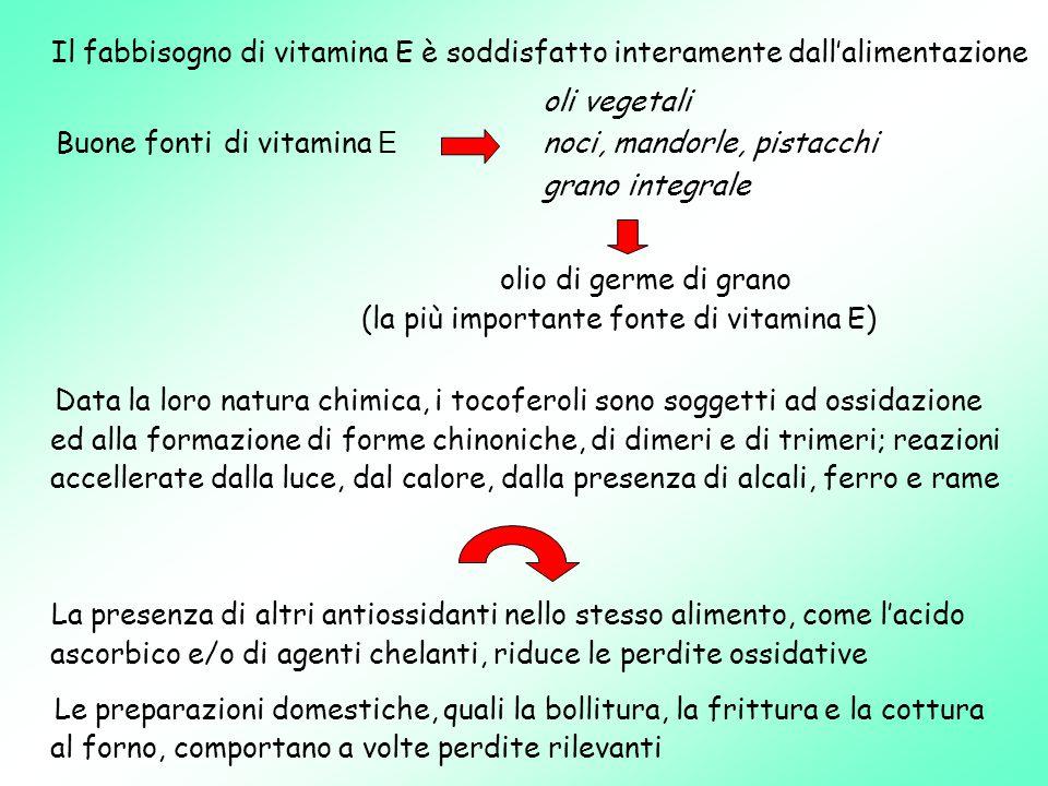 (la più importante fonte di vitamina E)