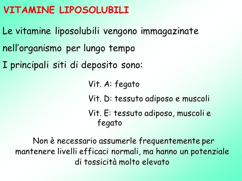 VITAMINE LIPOSOLUBILI