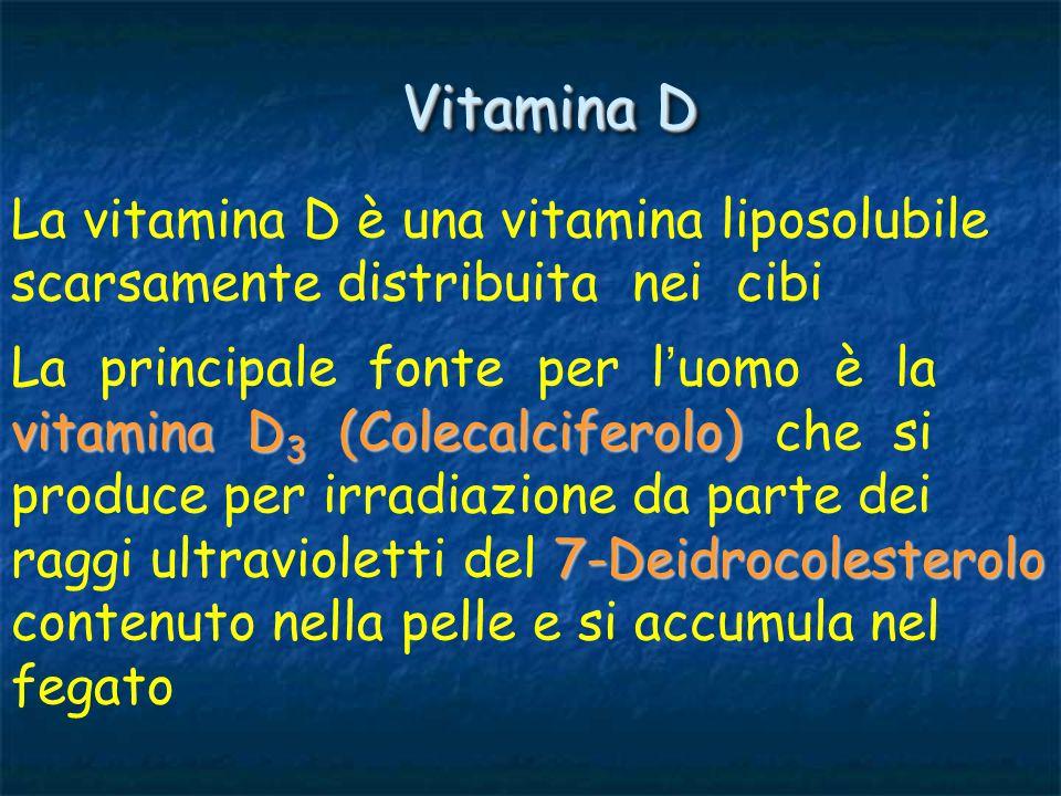 Vitamina D La vitamina D è una vitamina liposolubile scarsamente distribuita nei cibi.