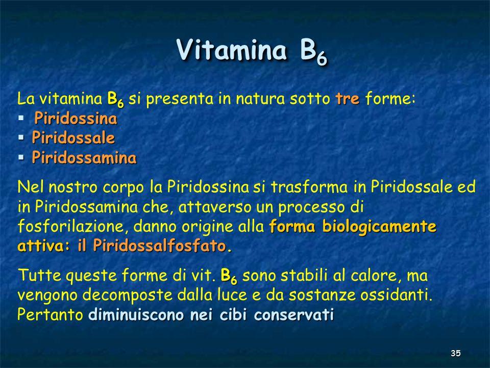 Vitamina B6 La vitamina B6 si presenta in natura sotto tre forme: