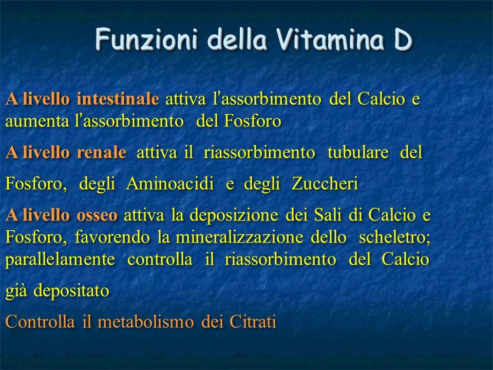 Funzioni della Vitamina D