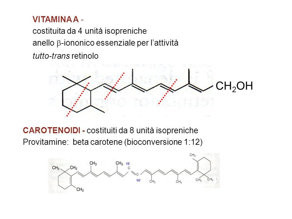 CH2OH VITAMINA A - costituita da 4 unità isopreniche