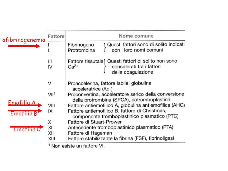afibrinogenemia Emofilia A Emofilia B Emofilia C