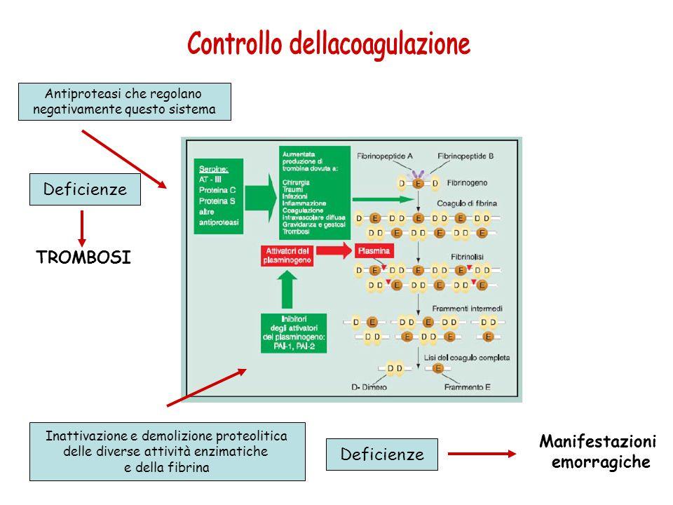 Controllo dellacoagulazione