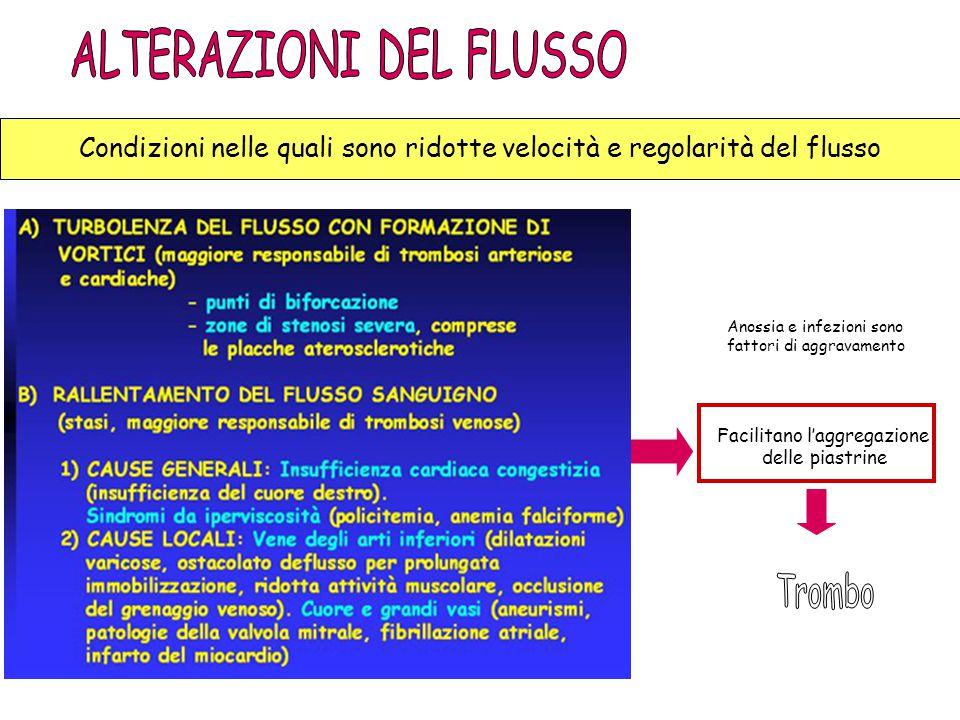 ALTERAZIONI DEL FLUSSO