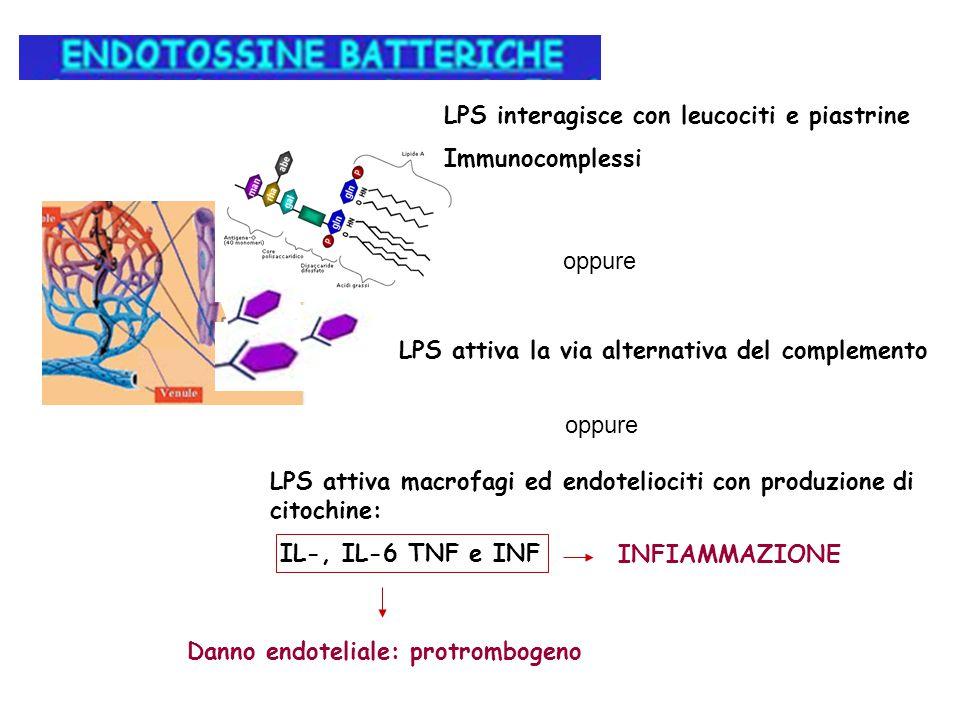 LPS interagisce con leucociti e piastrine