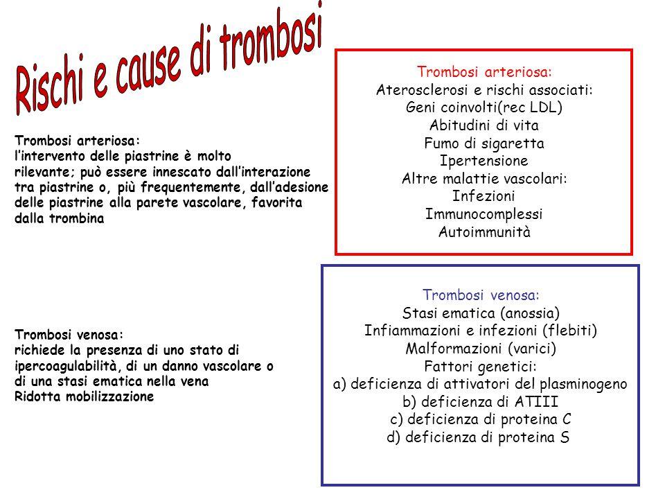 Rischi e cause di trombosi