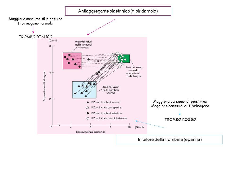 Antiaggregante piastrinico (dipiridamolo)