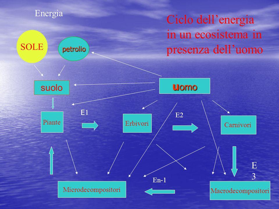 Ciclo dell'energia in un ecosistema in presenza dell'uomo