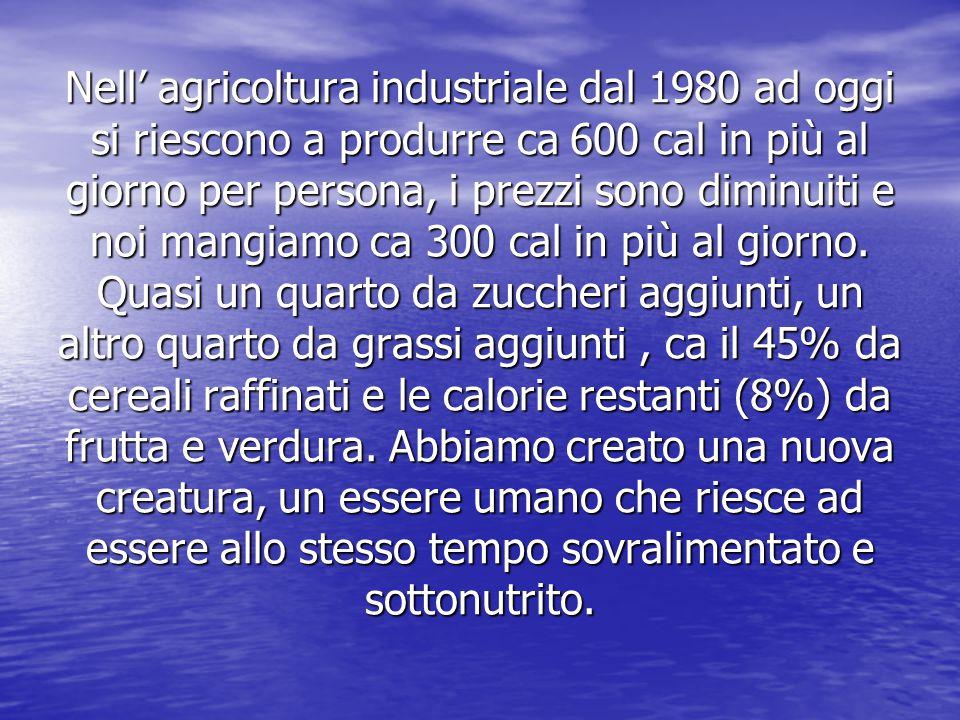Nell' agricoltura industriale dal 1980 ad oggi si riescono a produrre ca 600 cal in più al giorno per persona, i prezzi sono diminuiti e noi mangiamo ca 300 cal in più al giorno.