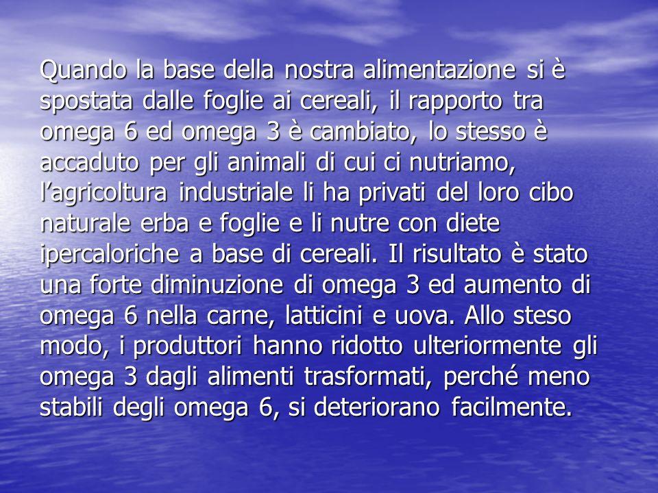 Quando la base della nostra alimentazione si è spostata dalle foglie ai cereali, il rapporto tra omega 6 ed omega 3 è cambiato, lo stesso è accaduto per gli animali di cui ci nutriamo, l'agricoltura industriale li ha privati del loro cibo naturale erba e foglie e li nutre con diete ipercaloriche a base di cereali.
