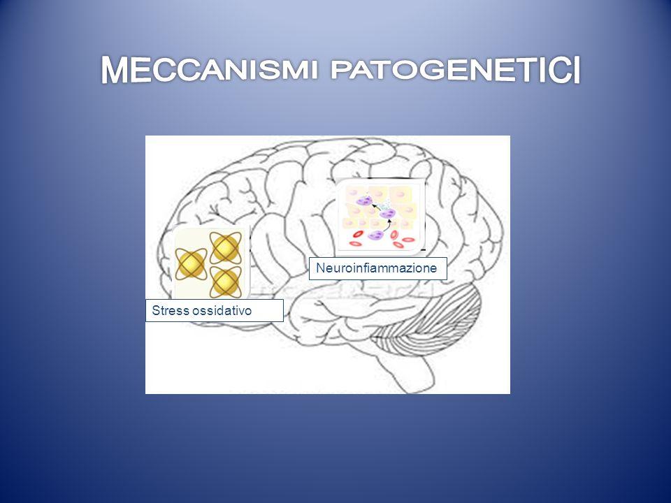 MECCANISMI PATOGENETICI