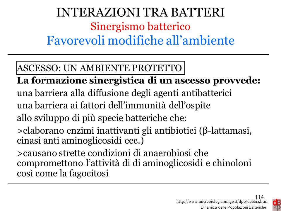 INTERAZIONI TRA BATTERI Sinergismo batterico Favorevoli modifiche all'ambiente