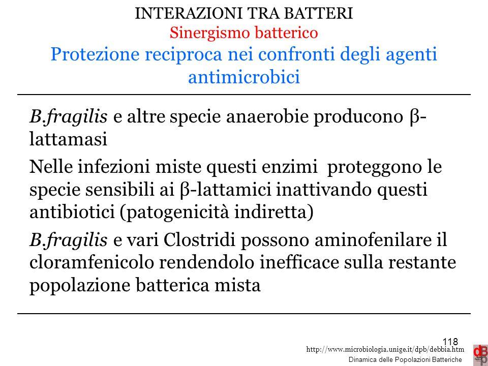 B.fragilis e altre specie anaerobie producono β- lattamasi