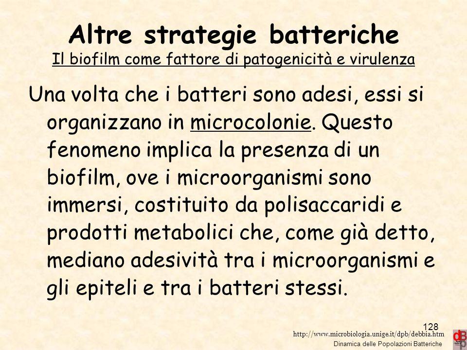 Altre strategie batteriche Il biofilm come fattore di patogenicità e virulenza