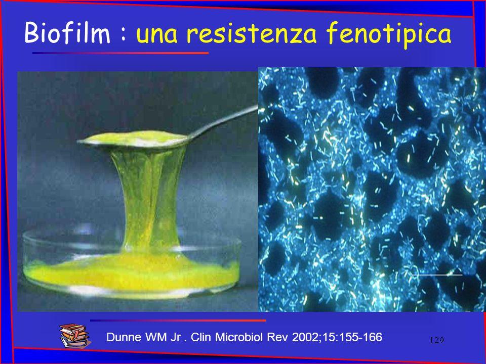 Biofilm : una resistenza fenotipica