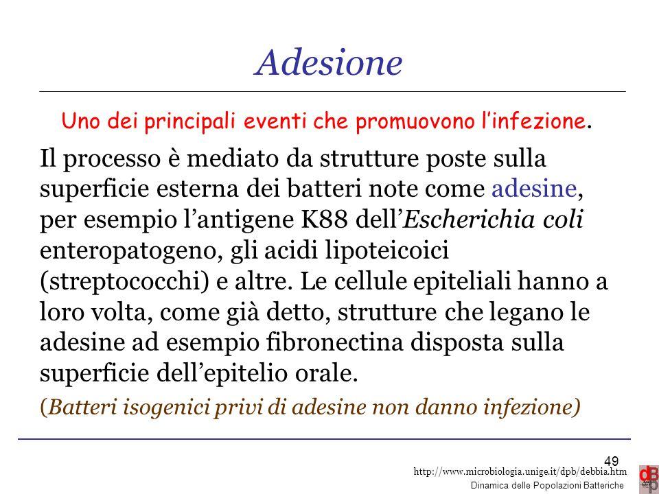 Adesione Uno dei principali eventi che promuovono l'infezione.