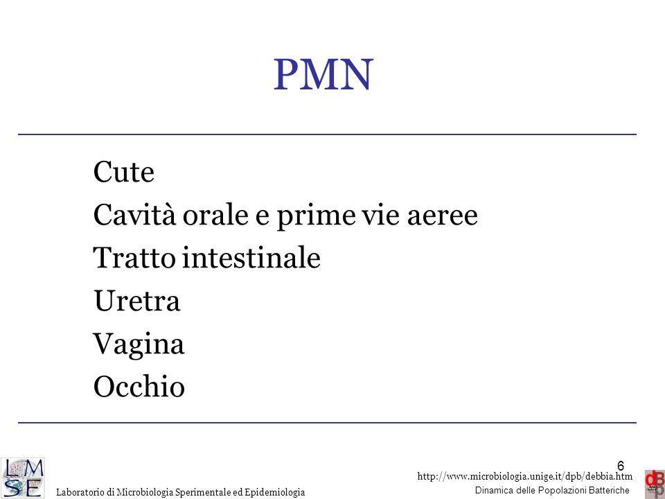 PMN Cute Cavità orale e prime vie aeree Tratto intestinale Uretra