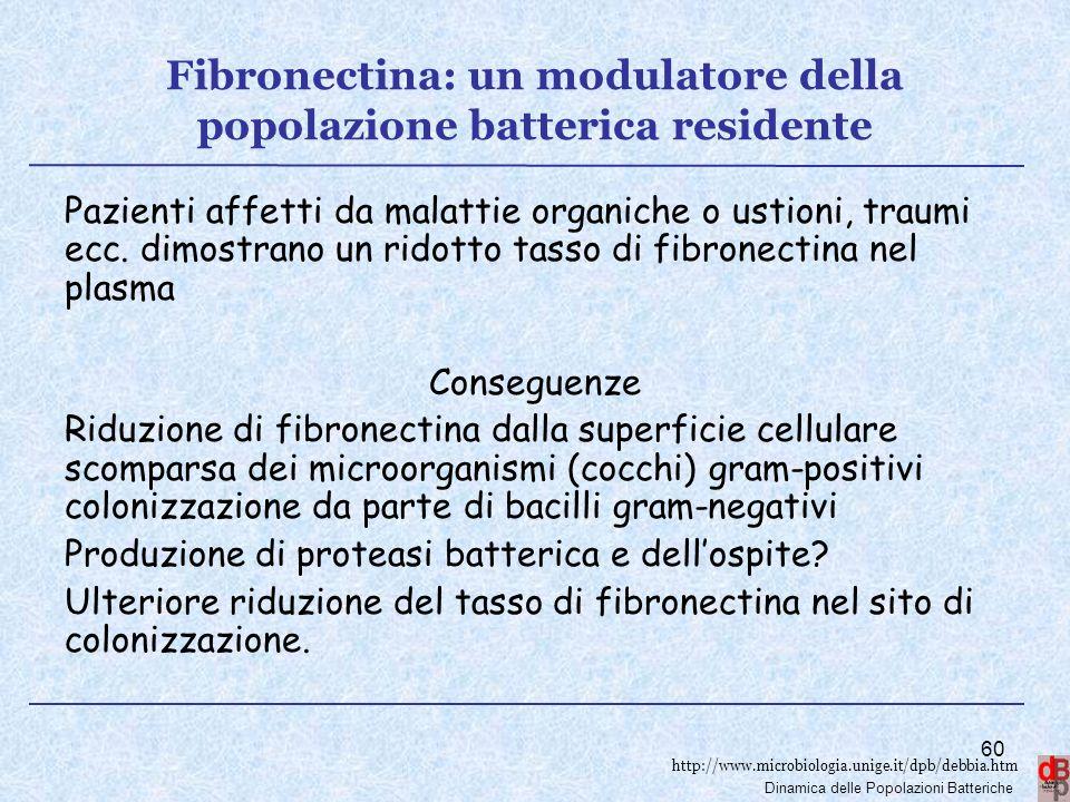 Fibronectina: un modulatore della popolazione batterica residente
