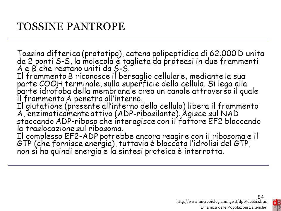 TOSSINE PANTROPE