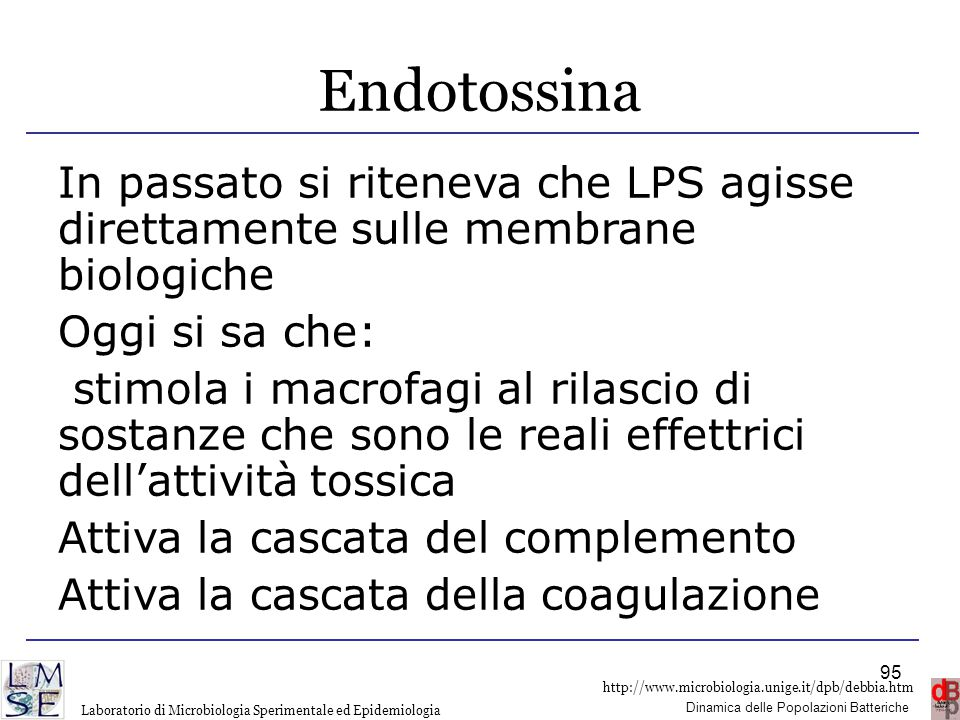 Endotossina In passato si riteneva che LPS agisse direttamente sulle membrane biologiche. Oggi si sa che: