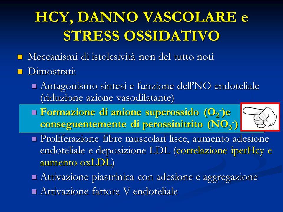 HCY, DANNO VASCOLARE e STRESS OSSIDATIVO