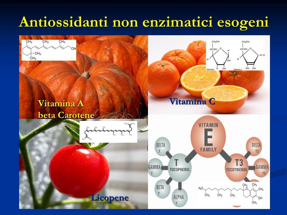 Antiossidanti non enzimatici esogeni
