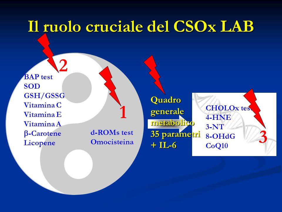 Il ruolo cruciale del CSOx LAB