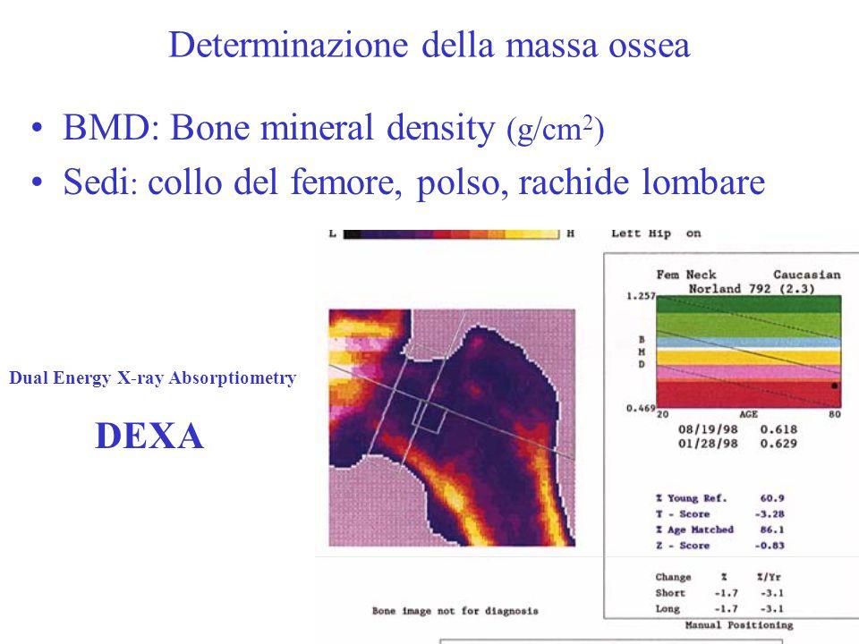 Determinazione della massa ossea