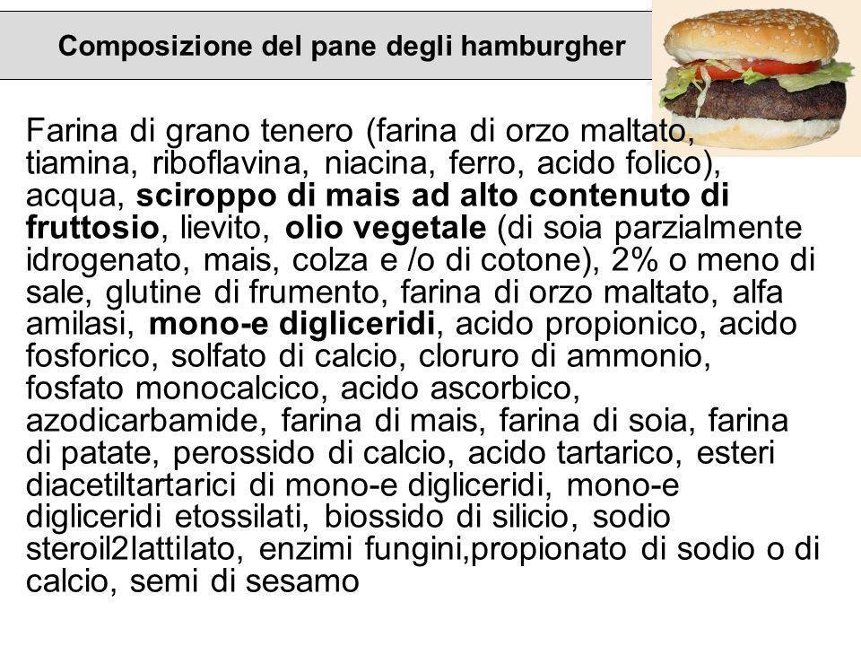 Composizione del pane degli hamburgher