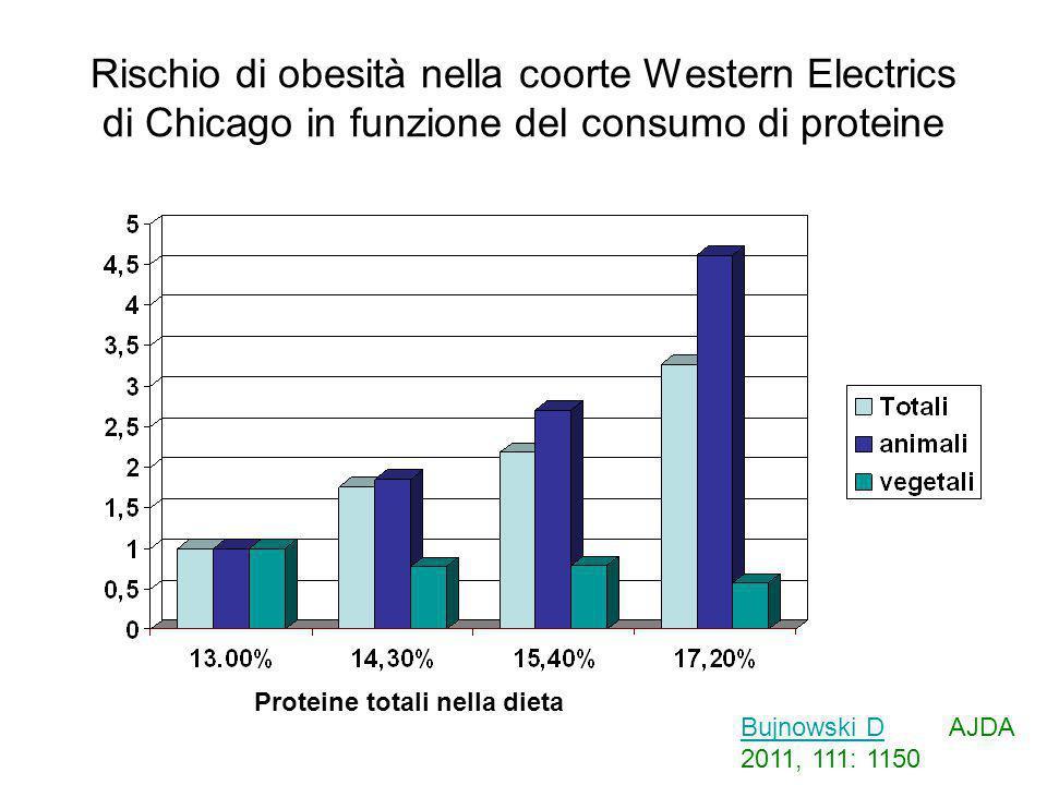 Rischio di obesità nella coorte Western Electrics di Chicago in funzione del consumo di proteine