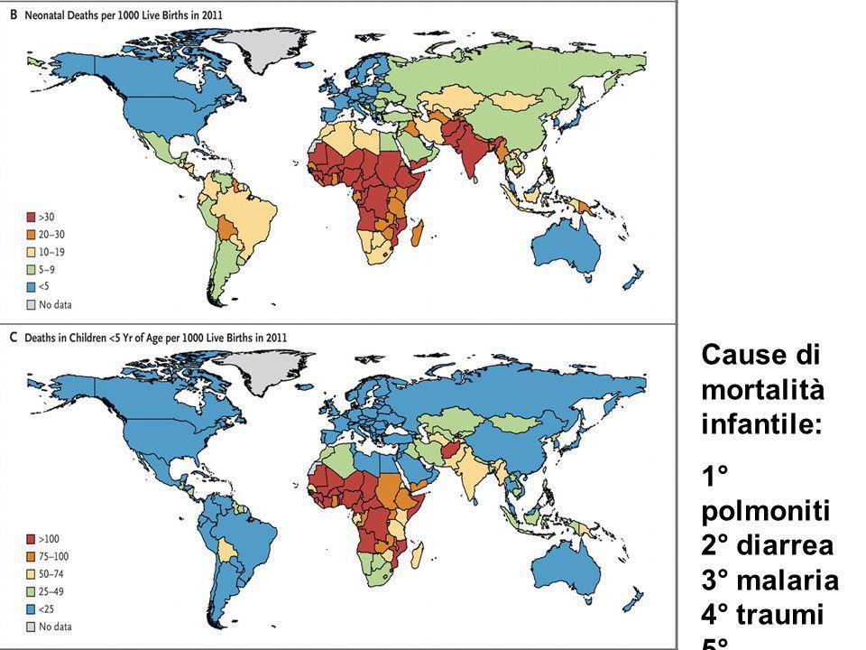 Cause di mortalità infantile: