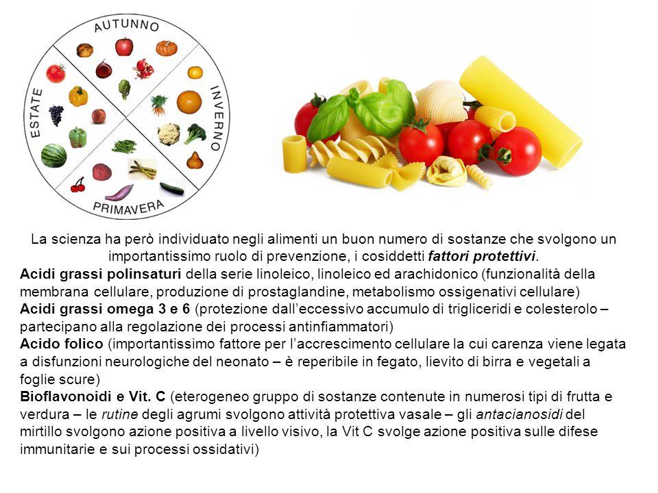 La scienza ha però individuato negli alimenti un buon numero di sostanze che svolgono un importantissimo ruolo di prevenzione, i cosiddetti fattori protettivi.
