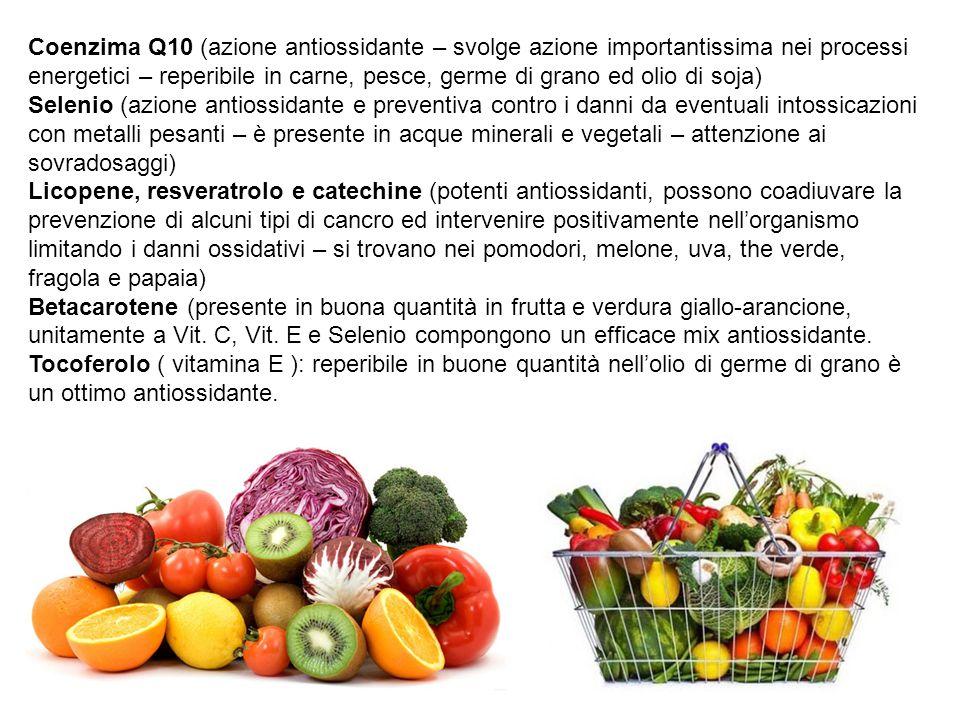 Coenzima Q10 (azione antiossidante – svolge azione importantissima nei processi energetici – reperibile in carne, pesce, germe di grano ed olio di soja)