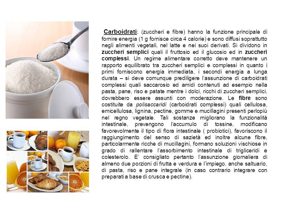 Carboidrati: (zuccheri e fibre) hanno la funzione principale di fornire energia (1 g fornisce circa 4 calorie) e sono diffusi soprattutto negli alimenti vegetali, nel latte e nei suoi derivati.
