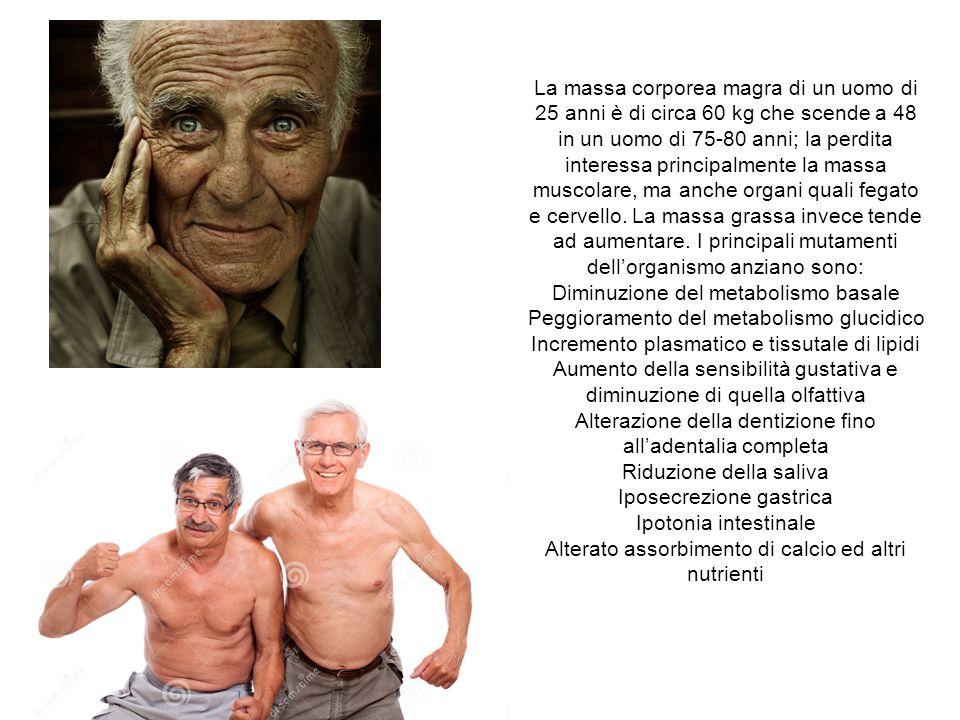 Diminuzione del metabolismo basale