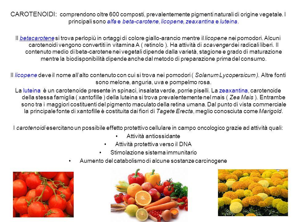 CAROTENOIDI: comprendono oltre 600 composti, prevalentemente pigmenti naturali di origine vegetale. I principali sono alfa e beta-carotene, licopene, zeaxantina e luteina.