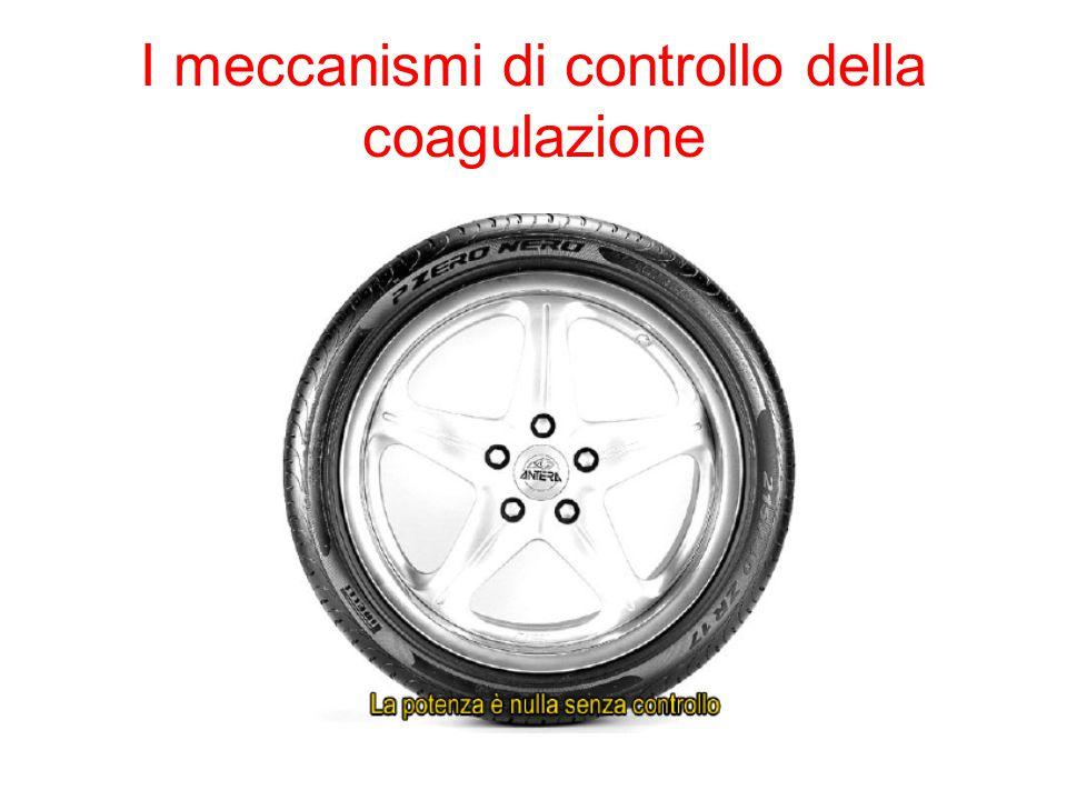 I meccanismi di controllo della coagulazione