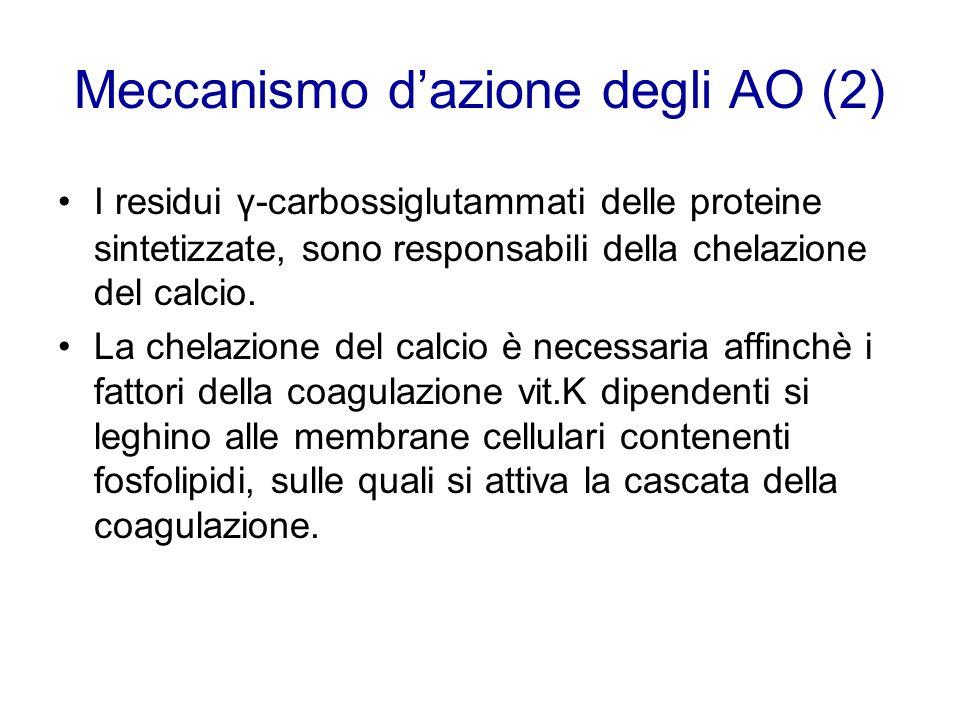 Meccanismo d'azione degli AO (2)