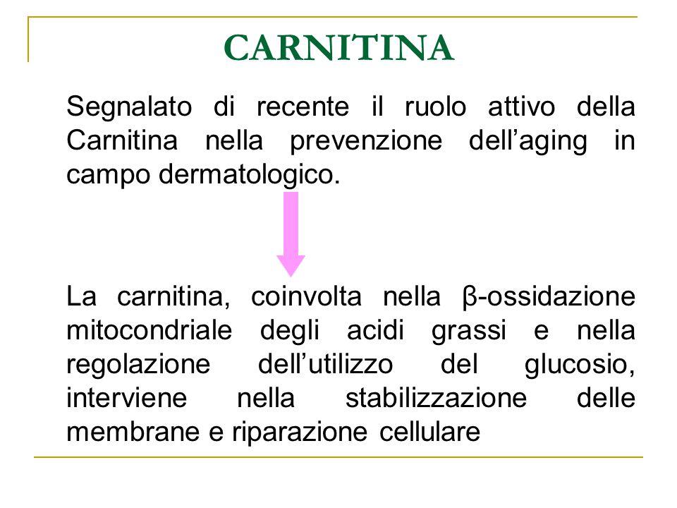 CARNITINA Segnalato di recente il ruolo attivo della Carnitina nella prevenzione dell'aging in campo dermatologico.